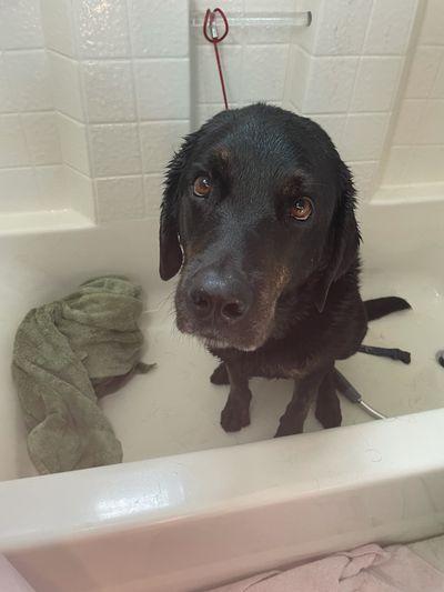 Aiden in bathtub